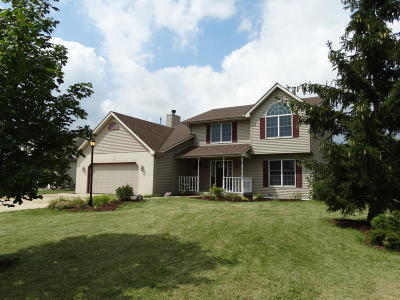 Pleasant Prairie Single Family Home For Sale: 8004 103rd Ave