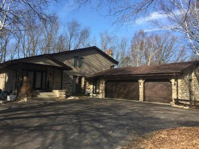 Menomonee Falls Single Family Home For Sale: N56w20134 Silver Spring Dr
