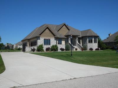Single Family Home For Sale: 37716 Wildwood Ln
