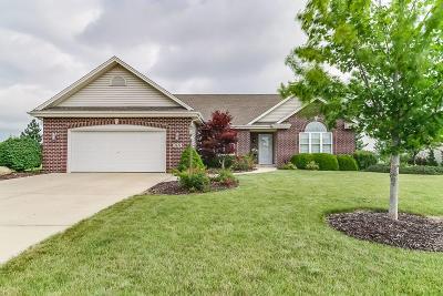 Kenosha County Single Family Home For Sale: 2628 11th St
