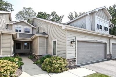 Slinger Condo/Townhouse Active Contingent With Offer: 576 Cedar Bluffs Way
