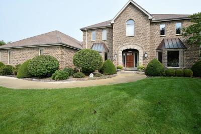 Racine County Single Family Home Active Contingent With Offer: 8344 Dora Ln