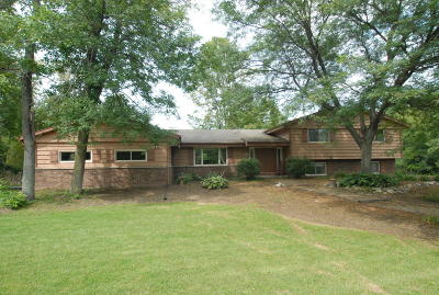 Mukwonago WI Single Family Home Active Contingent With Offer: $475,000