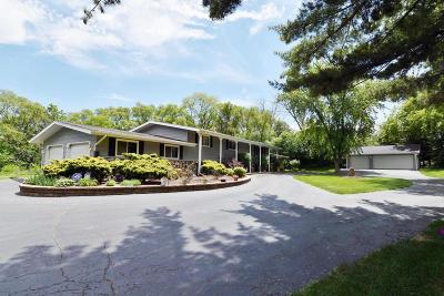 Kenosha County Single Family Home For Sale: 8743 368th Ave