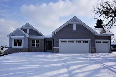 Racine County Single Family Home For Sale: 1101 90th St #Lt1