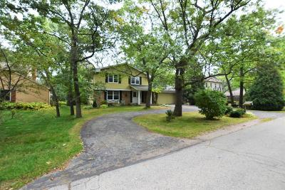 Pleasant Prairie Single Family Home Active Contingent With Offer: 8935 3rd Ave