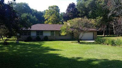 Brookfield Single Family Home For Sale: 18965 Lothmoor Dr Lower