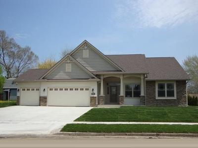 Racine County Single Family Home For Sale: Lt1 3 Mile Rd