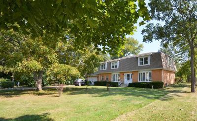 Kenosha County Single Family Home For Sale: 12023 256th Ave