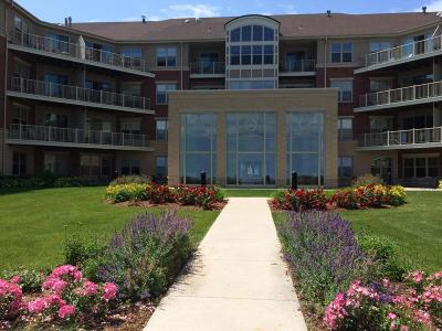 Milwaukee County Condo/Townhouse For Sale: 4110 S Lake Dr #436