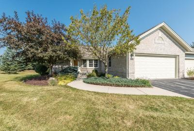 Brookfield Condo/Townhouse Active Contingent With Offer: 18460 Stonehedge Dr #A