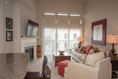 Racine County Condo/Townhouse For Sale: 141 Main St #416
