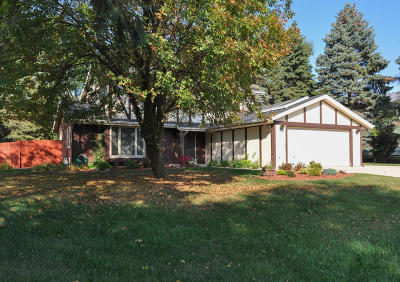 Greenfield Single Family Home For Sale: 4721 S 81st St