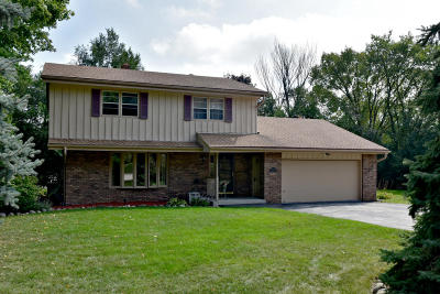 Waukesha County Single Family Home For Sale: 1370 S Parkway Dr