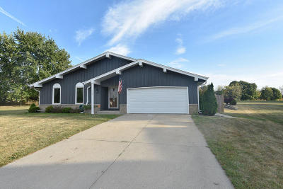 Waukesha County Single Family Home For Sale: 123 Carpenter Ct