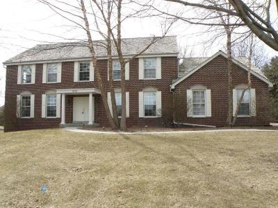Hartland Single Family Home For Sale: 908 Evergreen Cir