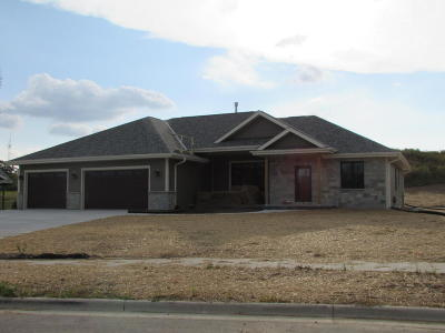 Single Family Home For Sale: 125 Patriot Ct