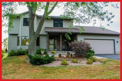 Waterloo Single Family Home Active Contingent With Offer: W12125 Longview Cir