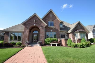 Brookfield Single Family Home For Sale: 19710 Bradon Trl W