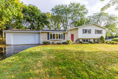 Brookfield Single Family Home Active Contingent With Offer: 19255 Benington Dr