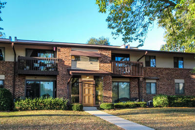 Pewaukee Condo/Townhouse For Sale: 345 Park Hill Dr #C