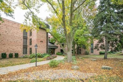 Shorewood Condo/Townhouse For Sale: 1818 E Shorewood Blvd #113