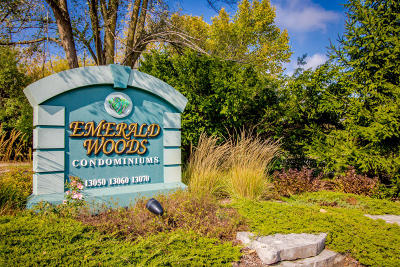 Elm Grove Condo/Townhouse Active Contingent With Offer: 13070 W Bluemound Rd #210