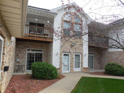 Milwaukee County Condo/Townhouse For Sale: 4300 W Grange Ave #5