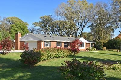 Single Family Home For Sale: 7864 N Green Bay Rd