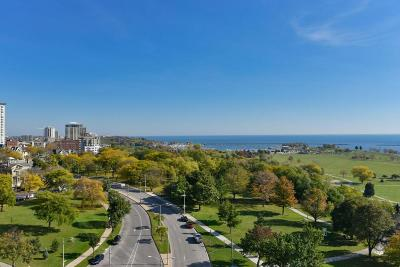 Milwaukee Condo/Townhouse Active Contingent With Offer: 923 E Kilbourn Ave #1003