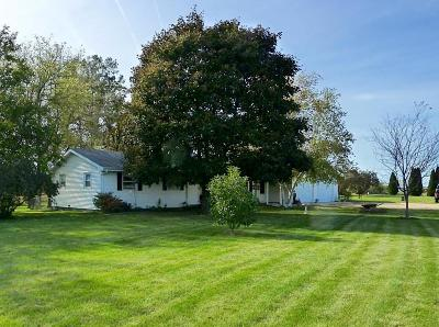 Walworth Single Family Home Active Contingent With Offer: N1599 Us Hwy 14