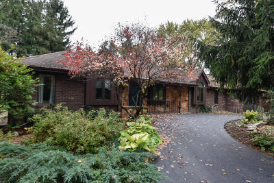 New Berlin Single Family Home For Sale: 13301 W Forest Dr