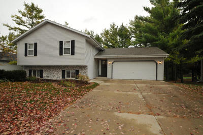 Jackson WI Single Family Home Active Contingent With Offer: $243,000