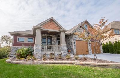 Milwaukee Single Family Home For Sale: 3733 S Cherokee Way