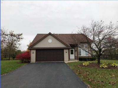 Kenosha County Single Family Home Active Contingent With Offer: 4488 123rd St