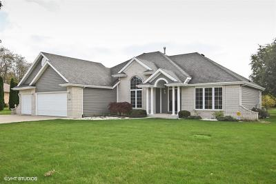 Racine County Single Family Home For Sale: 5637 Prairie Ridge Dr