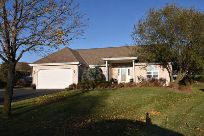 Single Family Home Active Contingent With Offer: 6820 S Conforti Ct