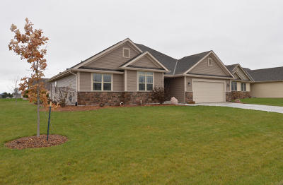 Racine County Single Family Home For Sale: 3837 Perennial Pkwy