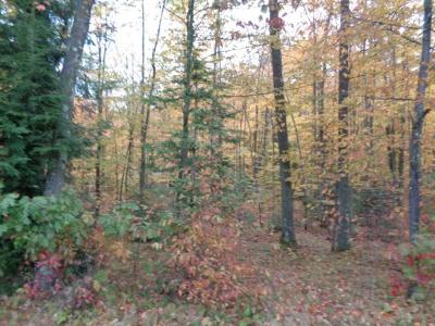Menominee County, Marinette County Residential Lots & Land For Sale: Lt0 S Shore Dr