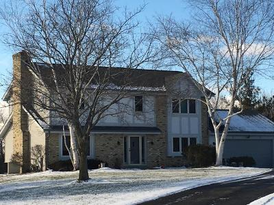 Mukwonago Single Family Home Active Contingent With Offer: W266s8045 Briarhedge Ct