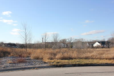 Plymouth Residential Lots & Land For Sale: 0 Hummingbird Ln