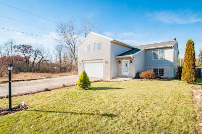 Pleasant Prairie WI Single Family Home Active Contingent With Offer: $269,900