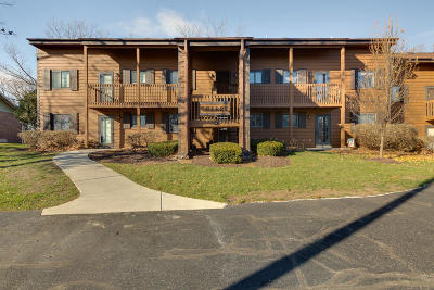 Kenosha County Condo/Townhouse Active Contingent With Offer: 6936 238th Ave #3