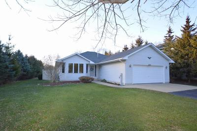 Pleasant Prairie Single Family Home For Sale: 9940 28th Ave