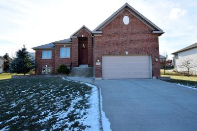 Single Family Home For Sale: 427 S Creek Dr