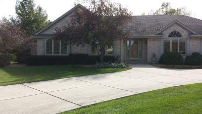 Richfield Single Family Home For Sale: 1587 Wolf Run Dr