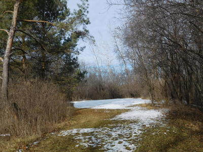 Mequon Residential Lots & Land For Sale: 6506 W Freistadt Rd