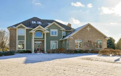 Hartland Single Family Home For Sale: N63w29061 Tail Band Ct