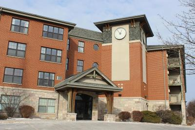 Waukesha Condo/Townhouse For Sale: 100 E Main St #429