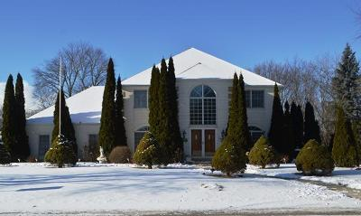 Pleasant Prairie Single Family Home Active Contingent With Offer: 8744 54th Ave